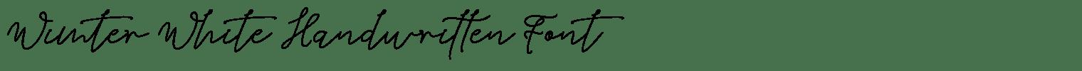 Wimter White Handwritten Font