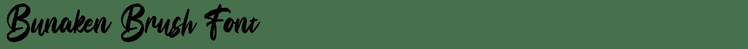 Bunaken Brush Font