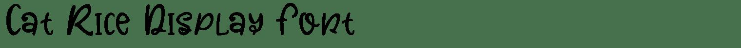 Cat Rice Display Font