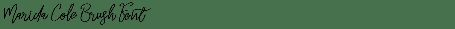Marida Cole Brush Font