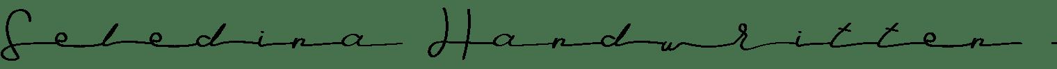 Seledina Handwritten Font