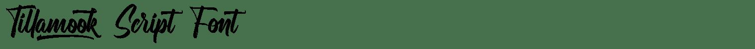 Tillamook Script Font