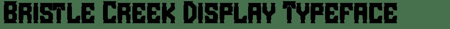 Bristle Creek Display Typeface