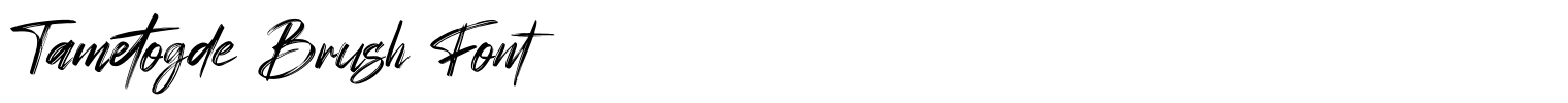 Tametogde Brush Font