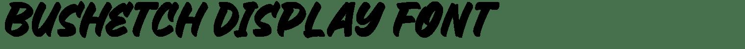 Bushetch Display Font