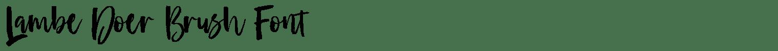 Lambe Doer Brush Font