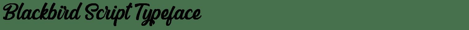 Blackbird Script Typeface