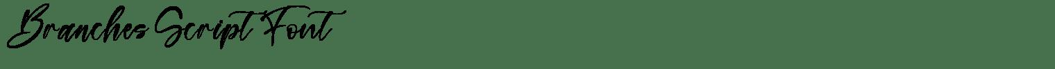 Branches Script Font