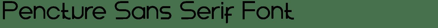 Pencture Sans Serif Font