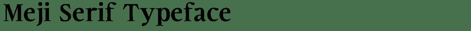 Meji Serif Typeface