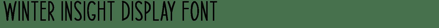 Winter Insight Display Font
