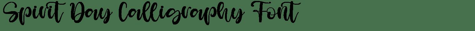 Spirit Day Calligraphy Font