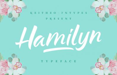 hamilyn