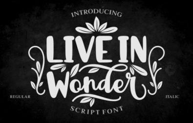 live-in-wonder