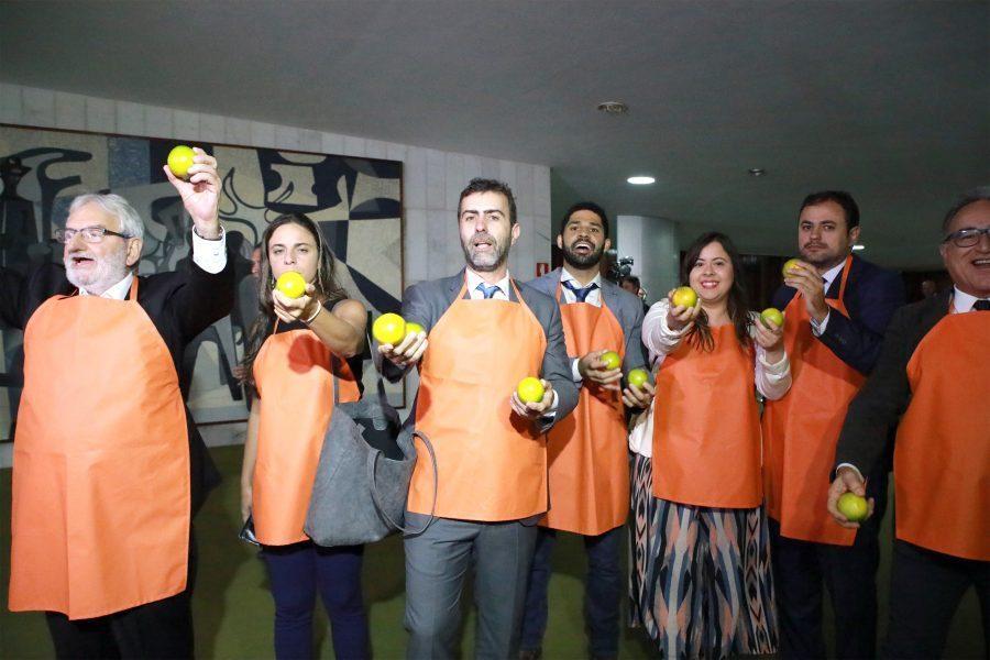 """""""Candidaturas laranjas"""" levam à cassação de toda a chapa, determina TSE"""