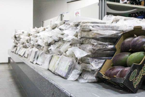 Polícia Civil do Ceará apreende 607 quilos de cocaína, a apreensão é a maior já realizada pelo órgão