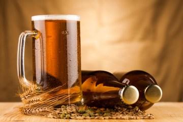 ølbrygning - bryg selv øl hjemme