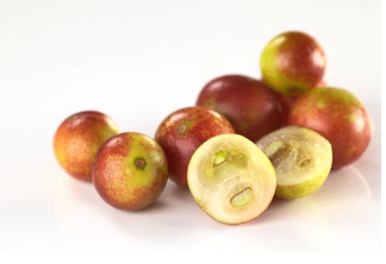 カムカムの効果や効能がスゴイ!注目のスーパーフードの栄養成分と食べ方について