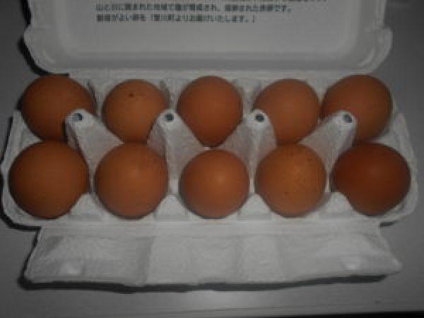 パッケージ卵