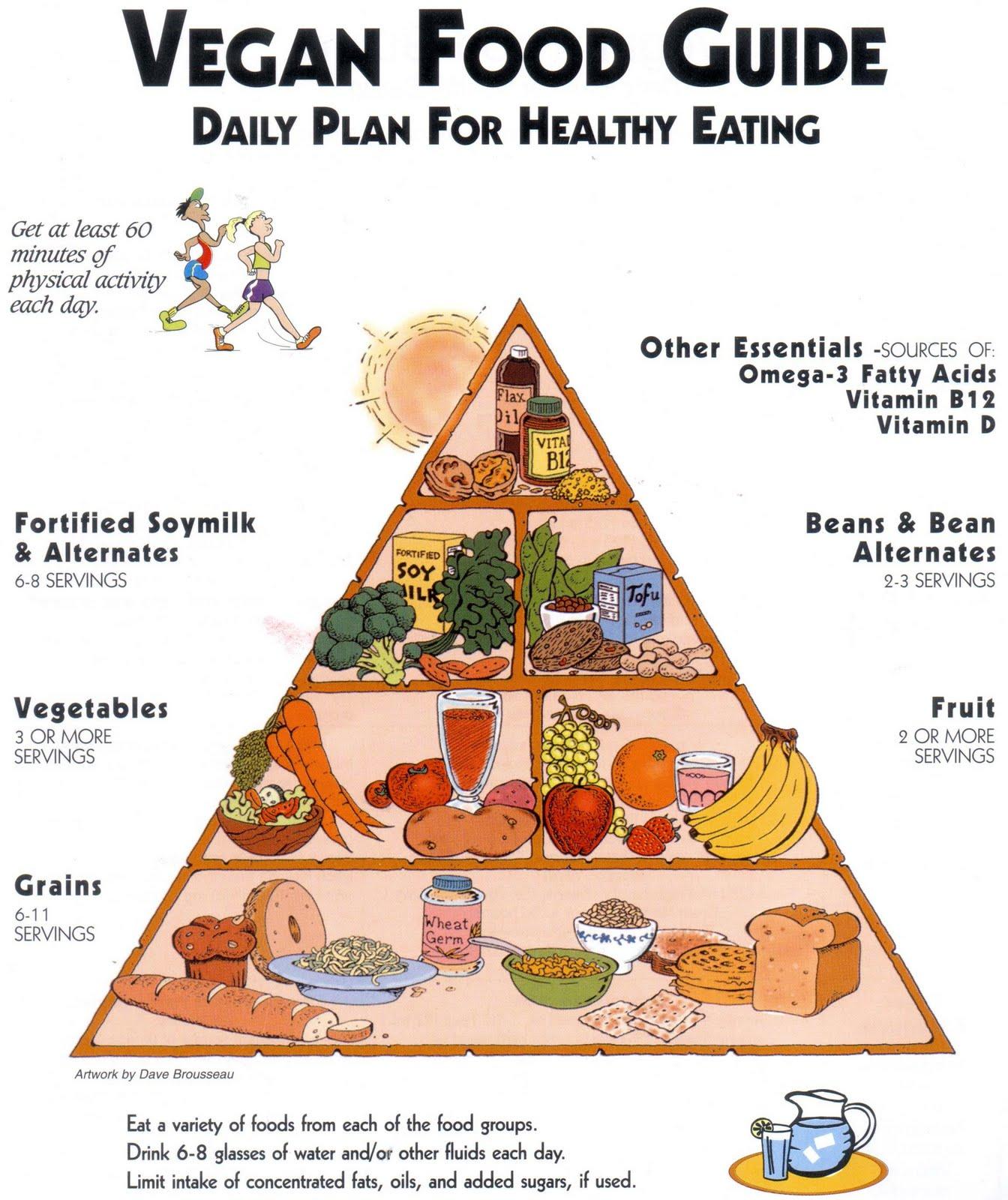 Usda Food Pyramids Food Pyramid