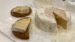 カリフラワーと大麻の種の代替チーズ