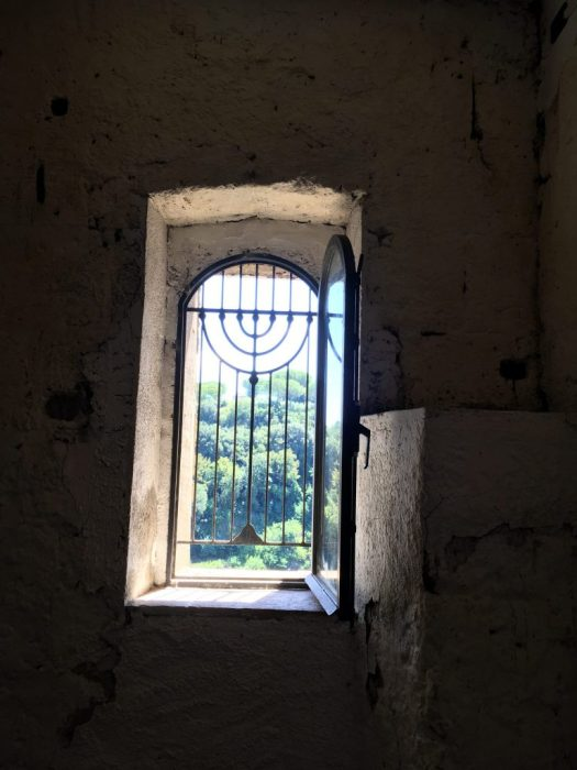 Window with Jewish motifs in the grill