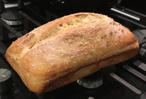 My (flat) first white sourdough bread