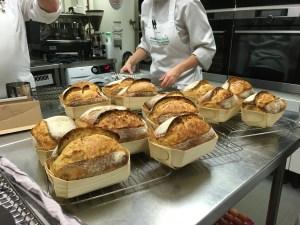 Small sourdough loaves