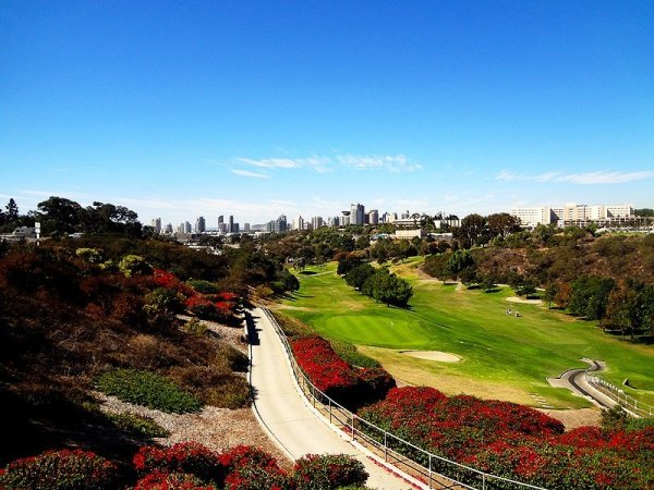 view-from-tobeys-19th-hole
