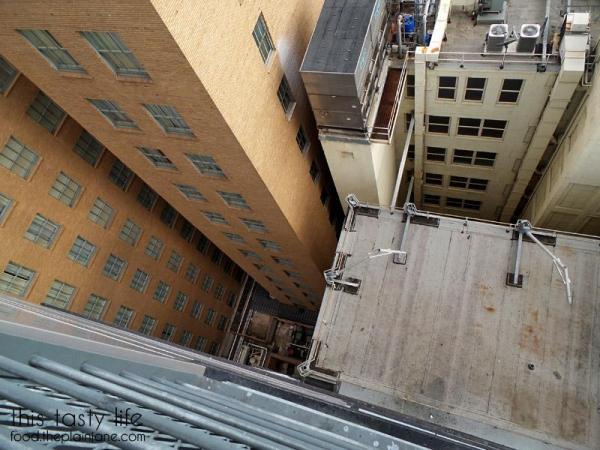 down-the-rabbit-hole-17th-floor