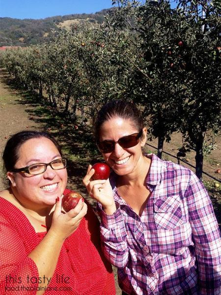 mary-laura-apples