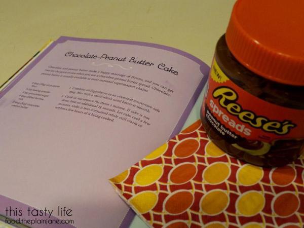 chocolate-peanut-butter-mug-cake