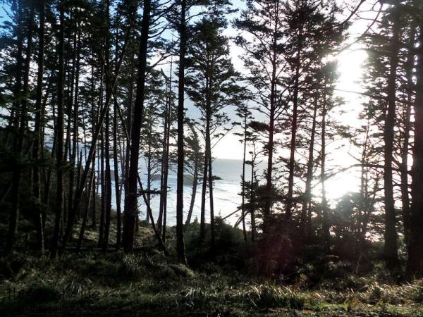 goonies-rocks-through-trees