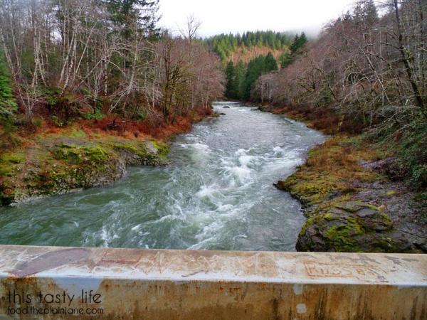 tillamook-forest-river