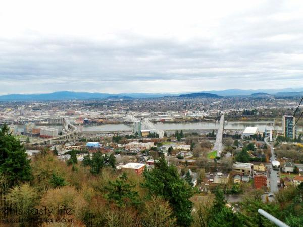 view-at-top-portland-aerial-tram