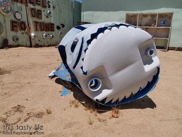 desert-whale