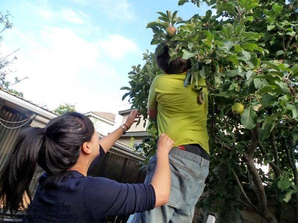 faye-s-picking-apples