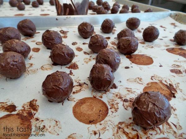 chocolate-dipped-truffles