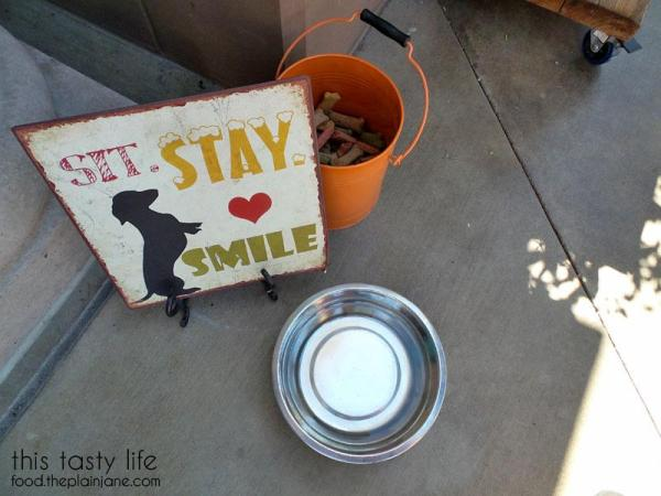 dog-friendly-bushfire-kitchen