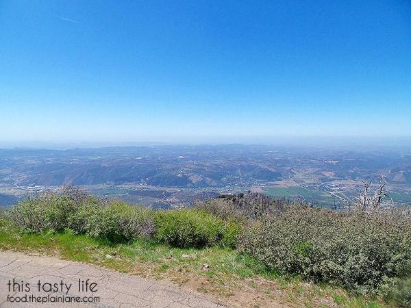 lookout-tower-view-palomar-mountain