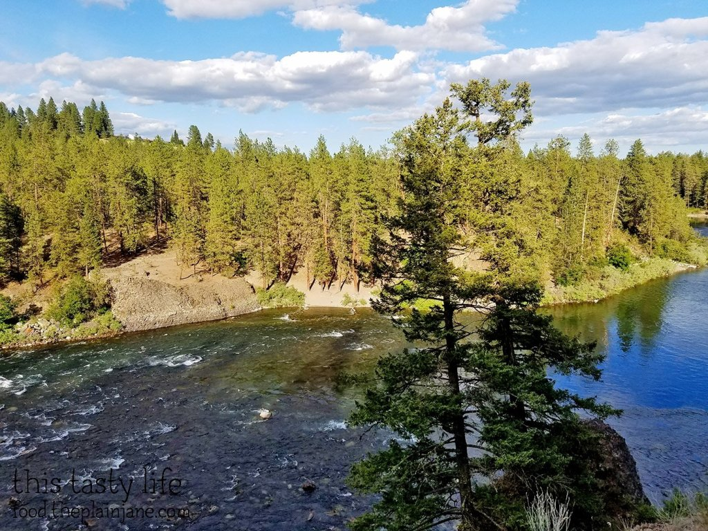 above-the-bridge-spokane-river