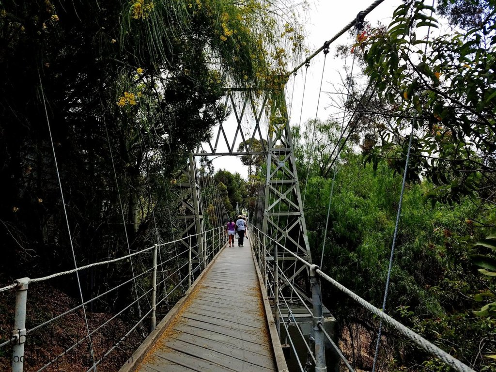 walking-across-bridge