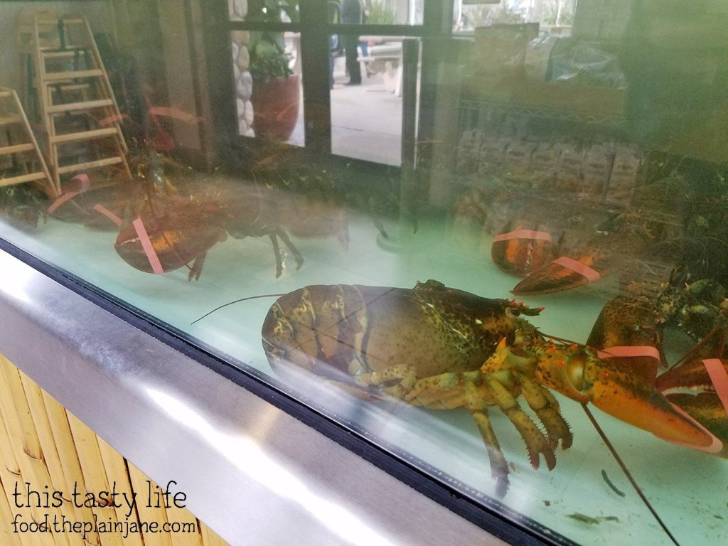 Lobster Tank at Point Loma Seafoods - San Diego, CA - This Tasty Life