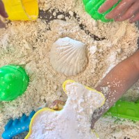 Moon Sand | Gluten Free, Vegan, Top 8 Free