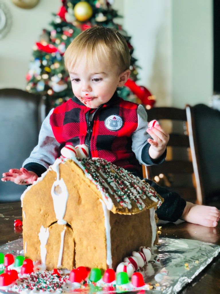Gingerbread House & Royal Icing Gluten Free, Vegan, Allergy Friendly Top 8 Free