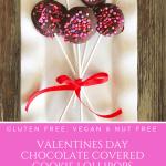 Valentines Day Chocolate Covered Cookie Lollipops | Gluten Free, Vegan, Nut Free