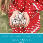 Muddy Buddy's AKA Puppy Chow | Gluten Free Top 8 Free Allergy Friendly