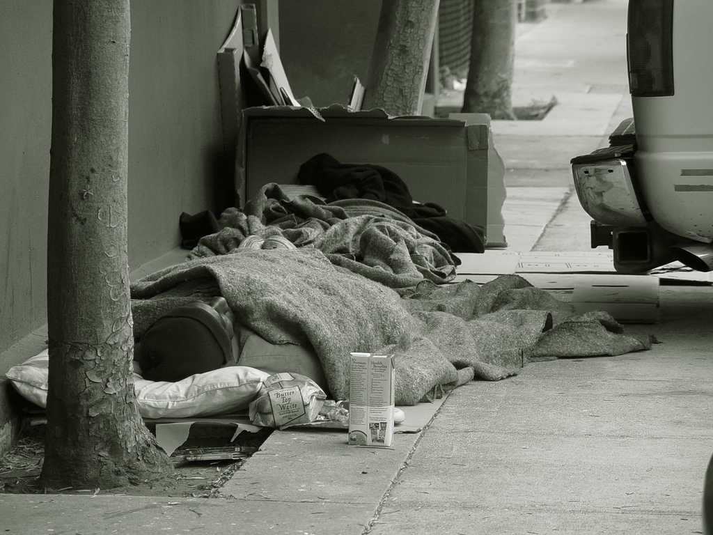 Land of the Free, Home for the Homeless - Food & Care Coalition