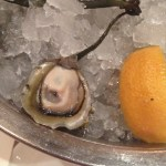 The delightful little Olympia oyster