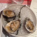 Steamed Shigoku oysters